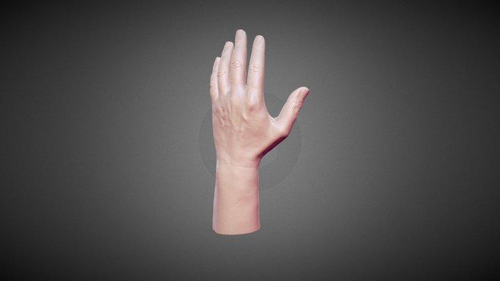 scan_hand_1M 3D Model