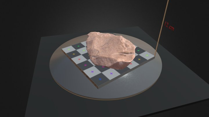 BIFACE 3D Model
