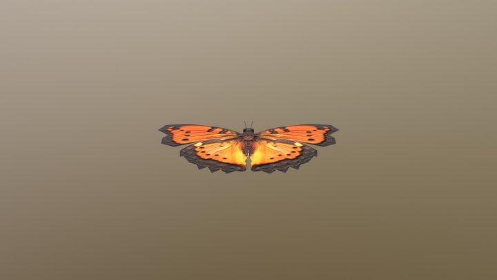 Buterfly 3D Model