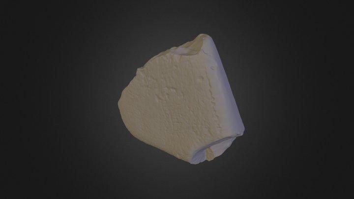 shingle 3D Model