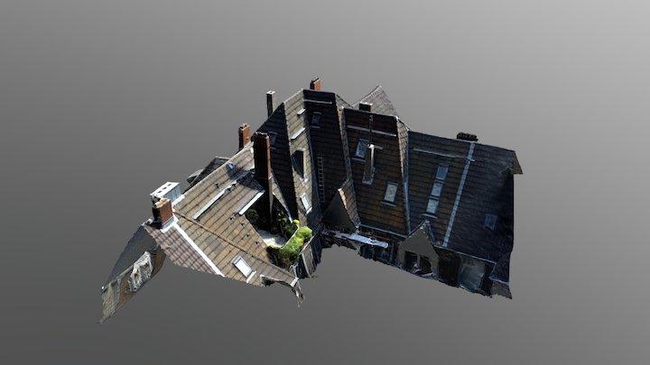 Falconing Dachinspektion 3D Model