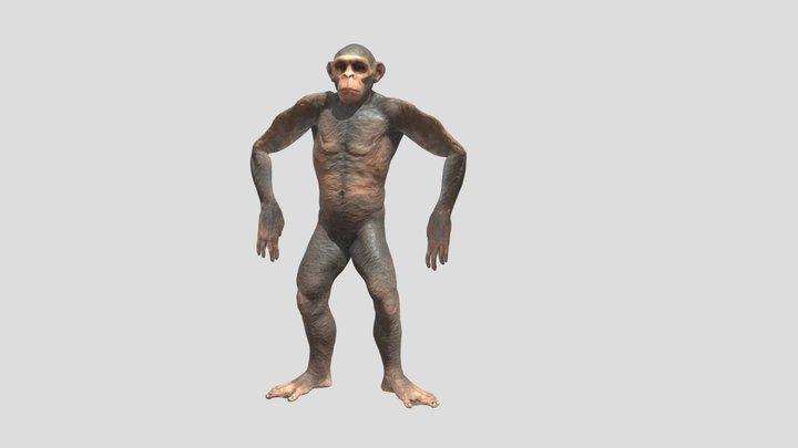 Simio Monkey dancing 3D Model