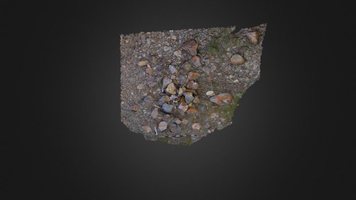Stone Cache and Bear Skull at Seal Camp Site 3D Model