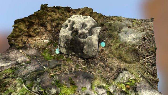 Pedra Leirada IV (Canteira Vella) 3D Model