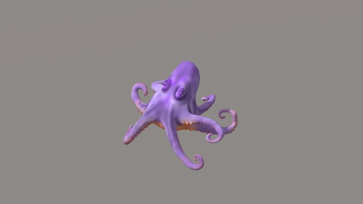 CARACATITA 3D Model