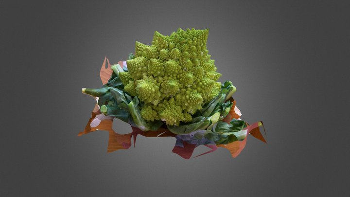 Romanesco cauliflower #3DST13 3D Model