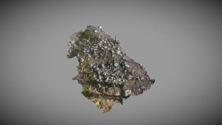 Rödockragrav i Ligga, Jokkmokks kommun 3D Model
