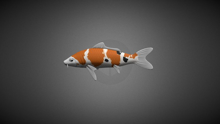 Animated koi fish 3D Model
