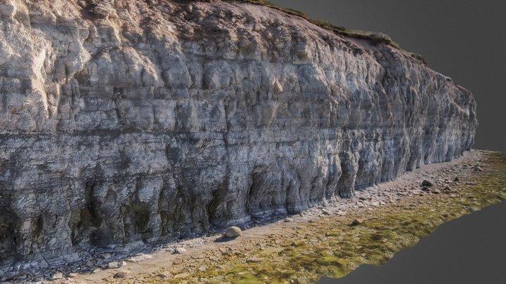 Panga Pank: Silurian Lime- And Dolostone Cliff 3D Model