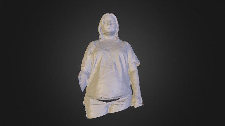 han 3D Model