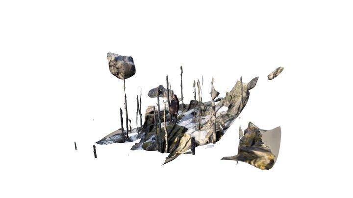 Raitis Meza 2 3D Model
