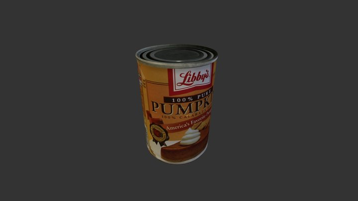 Pum 3D Model
