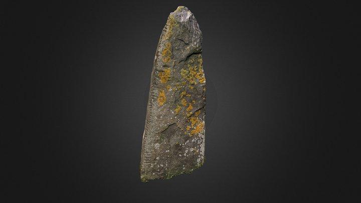 Ballinrannig ogham stone VII (textured) 3D Model