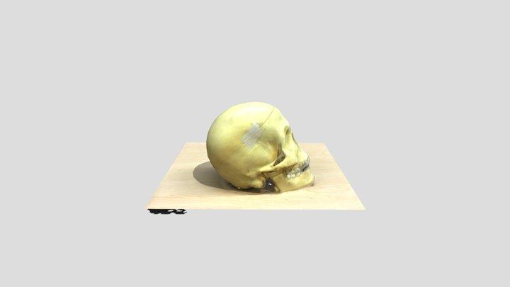 my friend skully 3D Model