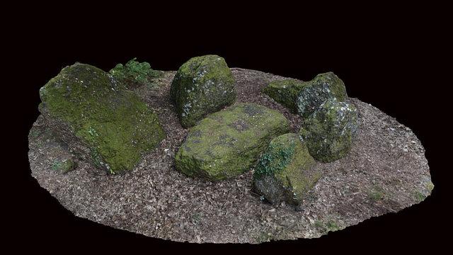 Nécropole mégalithique de Peyrehaut 3D Model