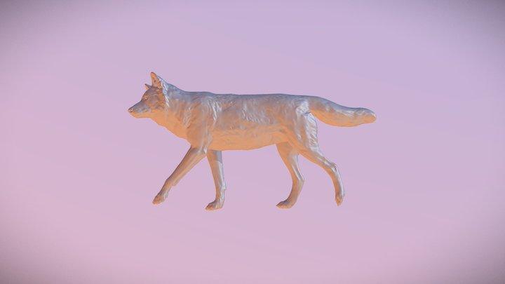 Roughwolftest 3D Model