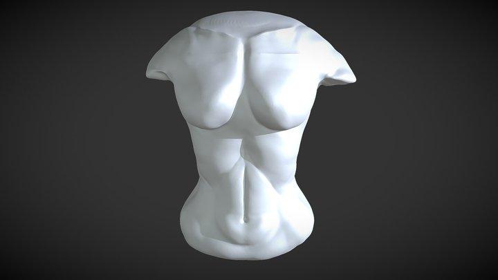 "Sculpt January18 day29: ,,female torso"" 3D Model"