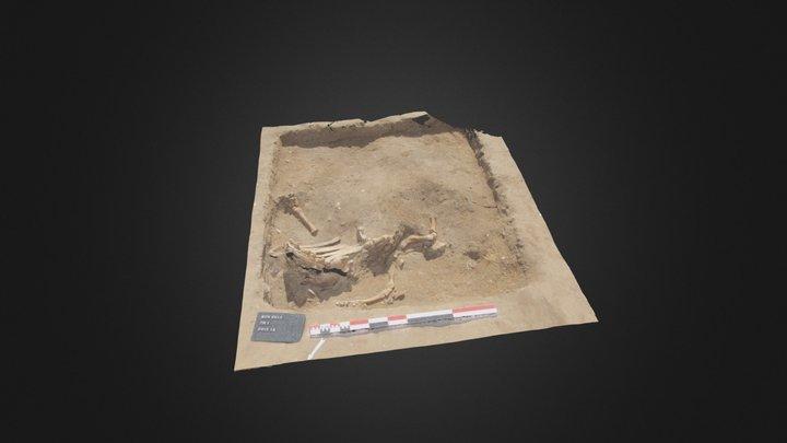 Test archeozoo 3D Model