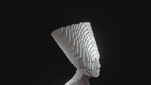 Nefertiti Voxel 3D Model