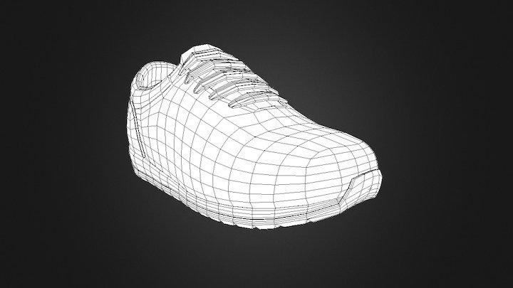 Shoe Wireframe 3D Model
