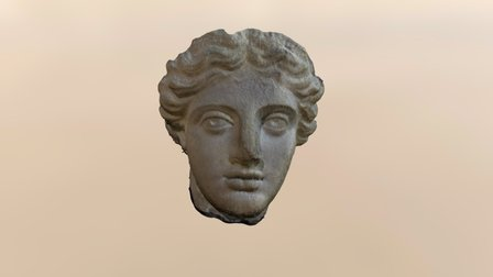 Head of Statue (made of archive pictures) 3D Model