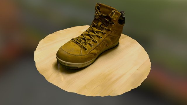 Shoe of the Night 3D Model