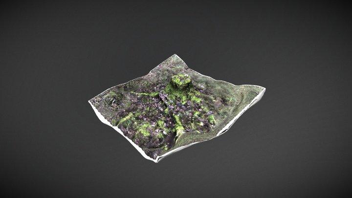 Stump 003 Scanned in Finland 3D Model