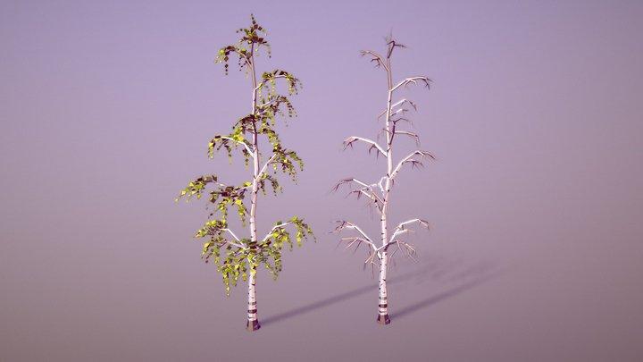 Birch Tree (Low Poly) 3D Model