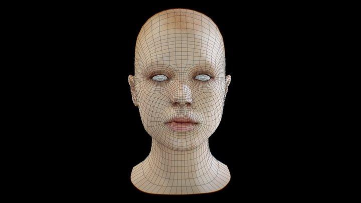 free_basemesh_head_woman 3D Model