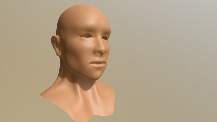 Male Head Mid-Res Topology 3D Model