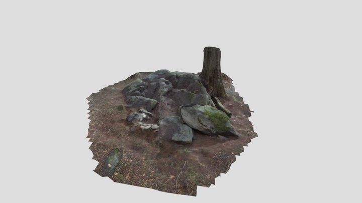 Groaning Rock - Jackson County GA 3D Model
