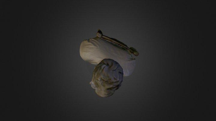 Axel 3D Model