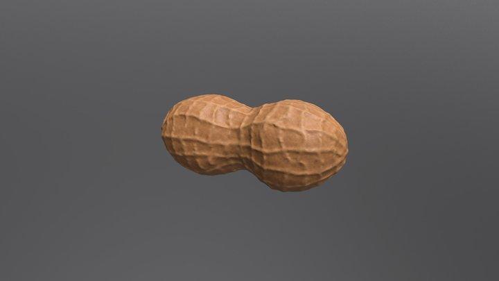 Peanut 3D Model