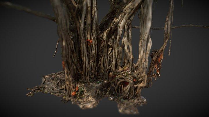 Big Banyan tree. Arambol, Goa 3D Model