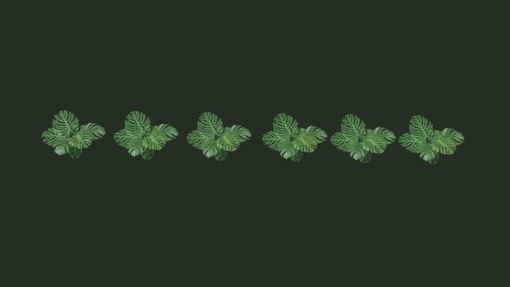 Tessellated Monstera with LOD models 3D Model