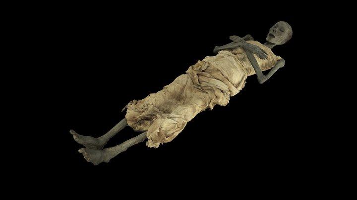 Mummy from Usermontu's Coffin 3D Model
