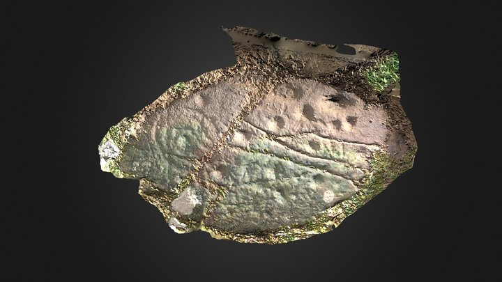 Low Banks, Dumfries and Galloway 3D Model