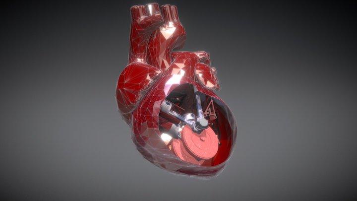 Heart Machine Beating 3D Model
