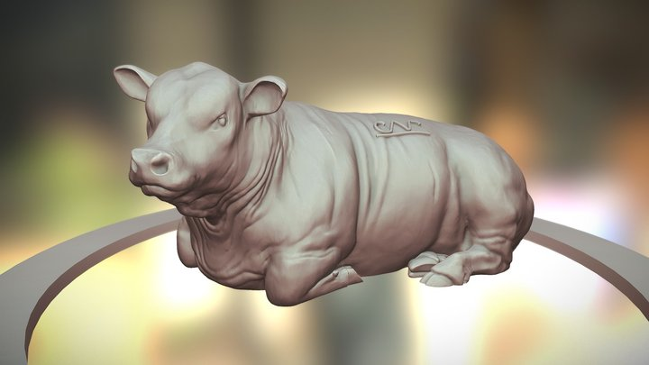 Polled Cattle Variant - 1/64