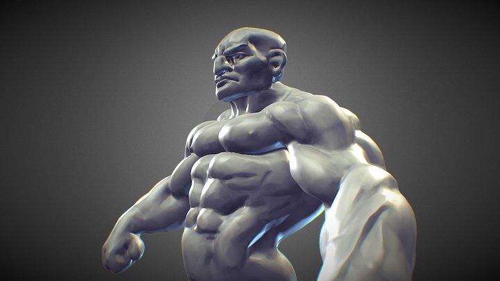 Speed Sculpt30min Study Muscle 3D Model
