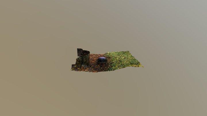 Rock Photoscan 3D Model