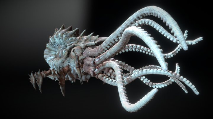 KRAKEN ANIMATIONS 3D Model