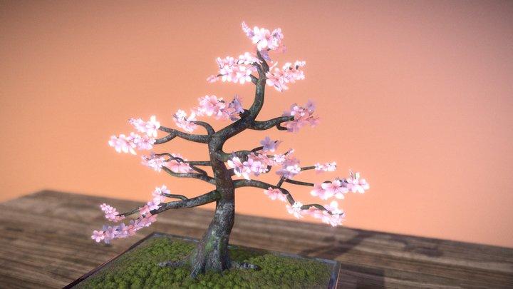 Countdown to Spring #8: Cherry Tree Bonsai 3D Model