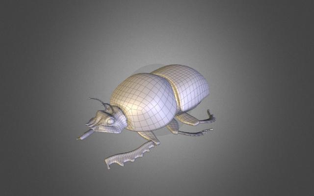 Beetle 3D Model