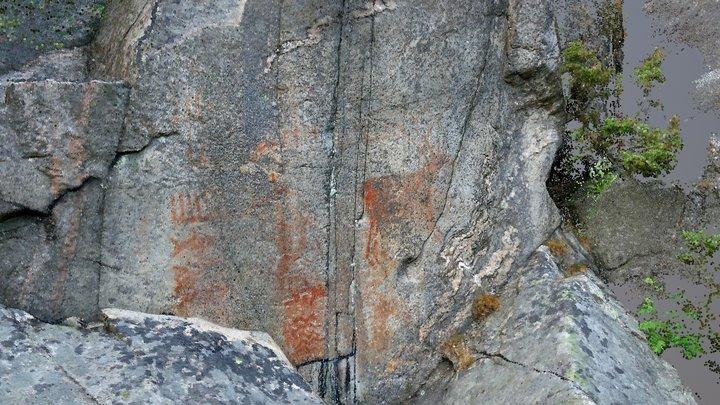 Rock art (hällmålning) Torslanda 216:1, Sweden 3D Model