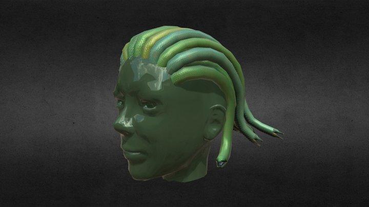 medusa hair 3D Model