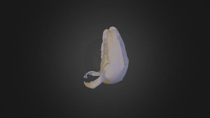Archive2 3D Model