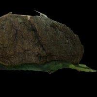 Badger Rock 3D Model