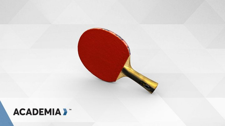 Ping pong Paddle scanned with ACADEMIA 50 3D Model