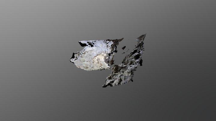 Hueso sobre Colada 3D Model